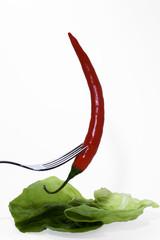 Salatschote I