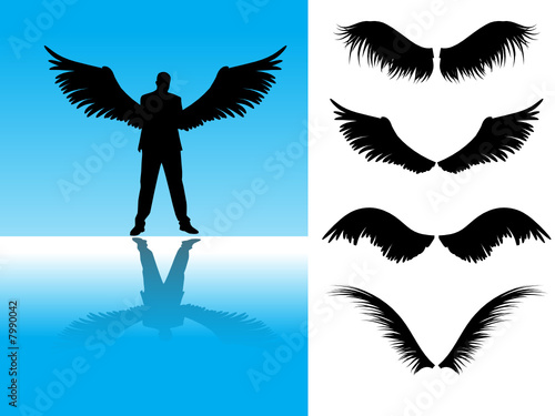 Collection of detailed angel or bird wings.