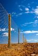 Leinwandbild Motiv Dog Fence near Coober Pedy - the longest fence in the world