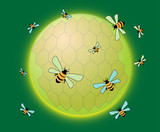 Bees and rounded honeycomb poster