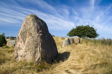 Hünengrab Riesenberg