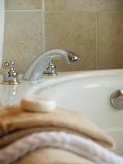 Elegant Bathtime 2