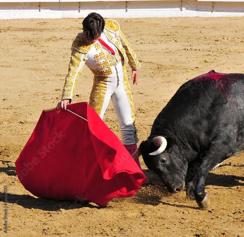 In de dag Stierenvechten Matador & Bull