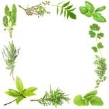 Fototapety Organic Herbs