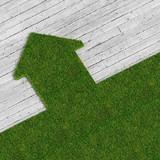 eco green house vs concrete traditional construcion, metaphor im poster
