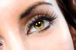 Leinwanddruck Bild The macro female eye