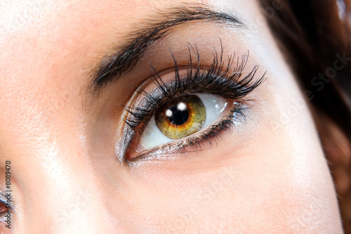 The macro female eye