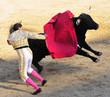 Leinwanddruck Bild - Matador & Jumping Bull