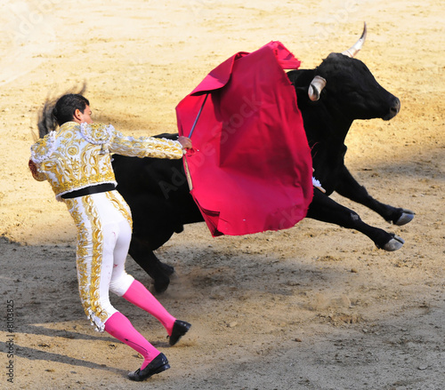 Leinwanddruck Bild Matador & Jumping Bull
