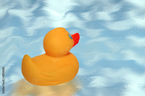 rubber duck 1