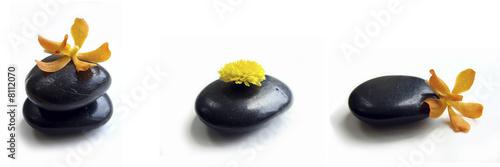 Leinwandbild Motiv Galet noir et orchidée