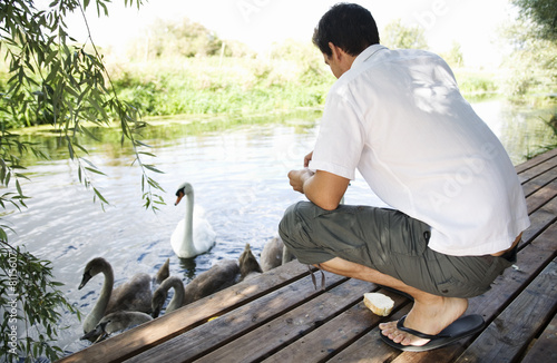 Young man feeding swans
