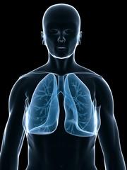 menschlicher schemen mit lungen