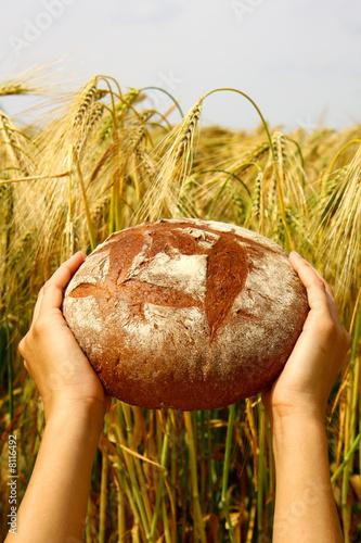 Brot für die Welt