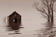 Flooded Iowa farmhouse - 8122080