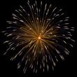 Firework over dark sky