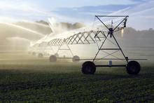 "Постер, картина, фотообои ""crop irrigation"""