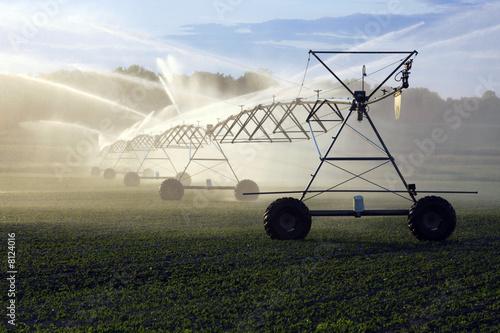 crop irrigation - 8124016