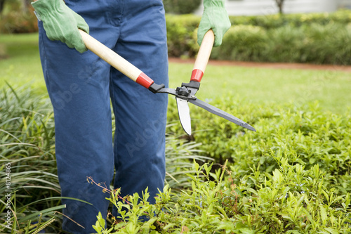 cropped image of person gardening with shears