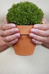 Woman holding the perfect little pot plant