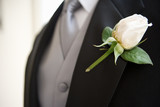 Groom wearing buttonhole, close-up, mid-section (differential focus)