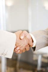 Close up of a two businessmen shaking hands
