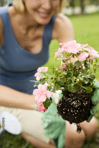 cropped image woman planting new plant