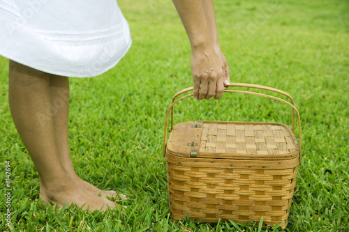 cropped image woman with picnic basket