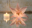 Leinwandbild Motiv Lilie und Kerze