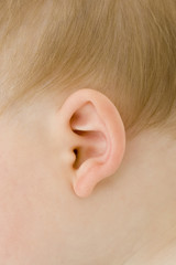 Baby boy (3-6 months), close-up of ear