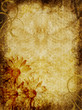 Parchment Textured Background Daisies