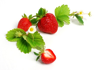 strawberries with leaves and flowers - corner decoration