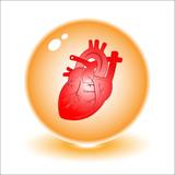 Fototapety Vector heart illustration. Simply change.