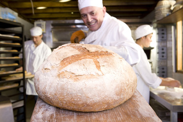 Baker taking bread from oven, smiling, portrait, low angle view