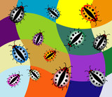 Colored illustration with various ladybirds poster