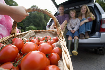 Girl (8-10) with basket of tomatoes, family in boot of car