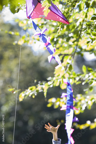 Boy (6-8) reaching for kite in tree