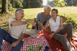 Three elderly friends on a picnic.