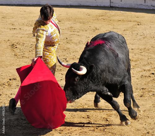 Fotobehang Stierenvechten Matador & Bull