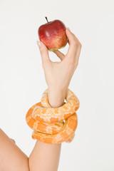 Schlange und Apfel