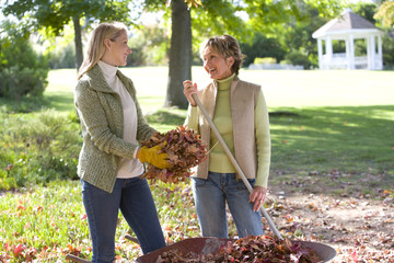 Women doing yard work in autumn