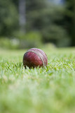 Cricket ball on grass, ground view