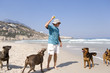 Man playing with dogs on beach, low angle view