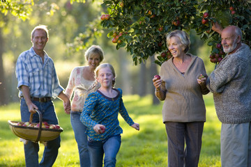 Three generations of family picking apples in orchard