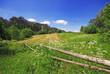 Beautiful summer field in Anderspach, Czech Republic