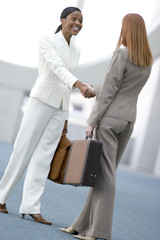 Two businesswomen shaking hands, smiling, side view (tilt)