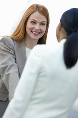Two businesswomen shaking hands, smiling (differential focus, tilt)