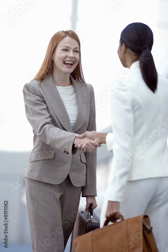 Two businesswomen shaking hands, smiling