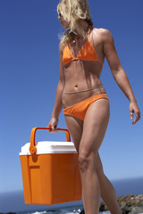 Young woman in orange bikini carrying cooler on beach, low angle view