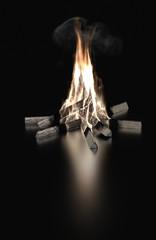 3D bonfire